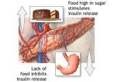 Ефектите на инсулина